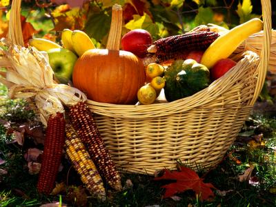 autumn-guernsey-harvest-service